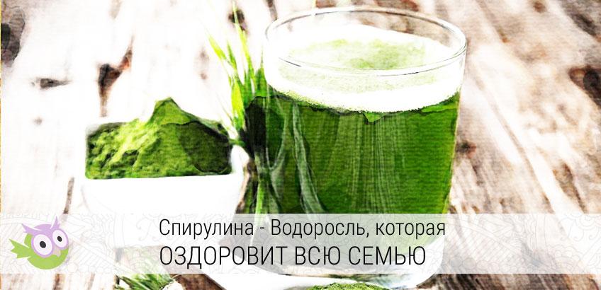 Спирулина и её лекарственные свойства отзывы