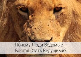 почему люди ведомые боятся становиться людьми ведущими