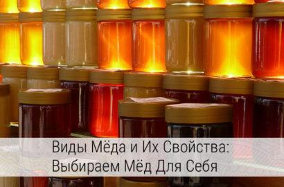 виды мёда и их свойства