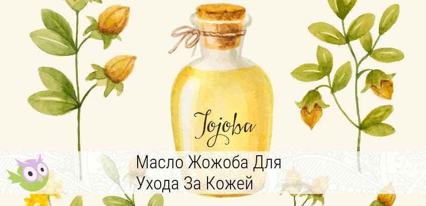 масло жожоба свойства и применение для кожи