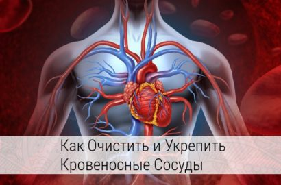 как очистить кровеносные сосуды народными средствами