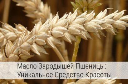 масло зародышей пшеницы свойства и применение в косметологии
