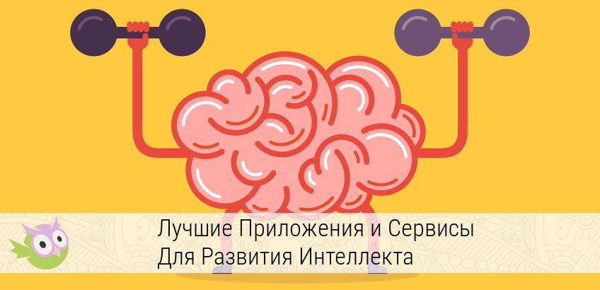 программы для развития памяти и внимания