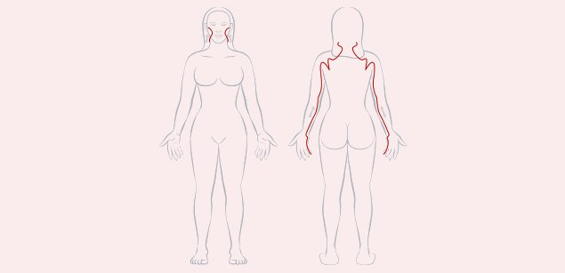 Меридиан тонкого кишечника