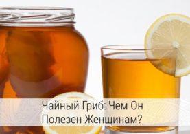 чайный гриб полезные свойства и противопоказания для женщин