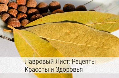 лечебные свойства лаврового листа и противопоказания