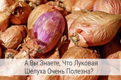 Лечебные свойства луковой шелухи и противопоказания