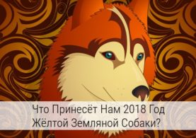 2018 год по китайскому календарю