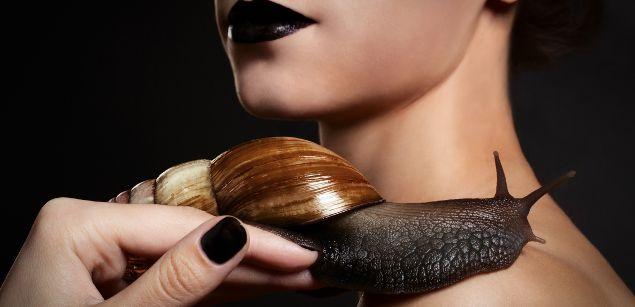 улитка ахатина на женщине
