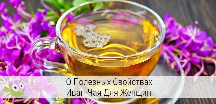 иван-чай лечебные свойства и противопоказания для женщин