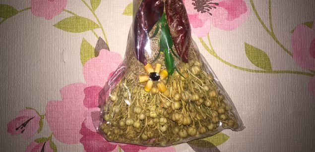 мистические свойства травы гамбала