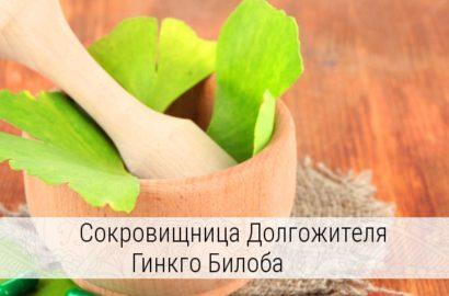 как заваривать листья гинкго билоба